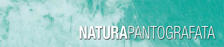 Materasso Rio OmniaFlex Dormire Bene 0828 354664  ikea artistica materassi prezzi ultima